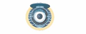 Piwipedia Logo