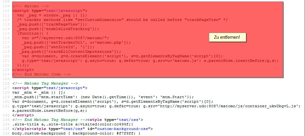 Es darf nur das Script des Matomo Tag Managers im HTML stehen